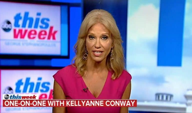 Kellyanne Conway Gets Put On The Spot On Live TV, Has Trouble Naming Top Ranking Black Official In The White House
