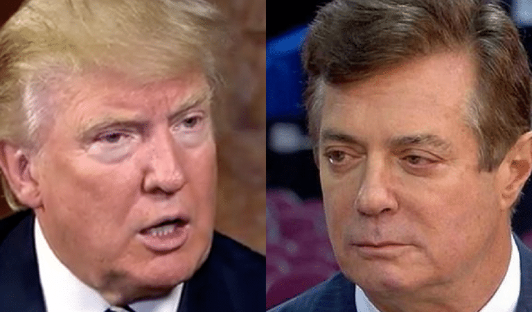 Law Professor Reveals How Lone Juror On Manafort Case Will Send Him To Prison Regardless Of A Pardon From Trump