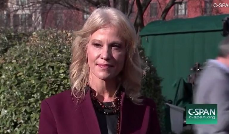 "Kellyanne Conway Snaps In Front Of Reporters, Calls Journalist A ""Smart-Ass"""