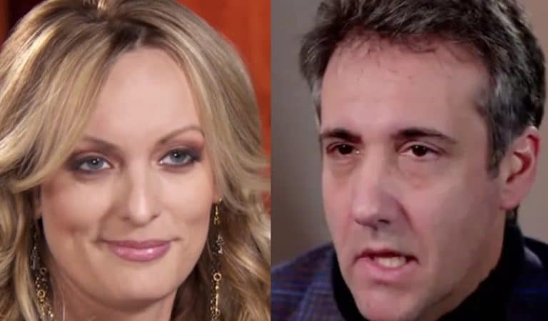 Stormy Daniels Responds To Cohen Testimony, This Is The Last Thing You'd Expect Her To Say