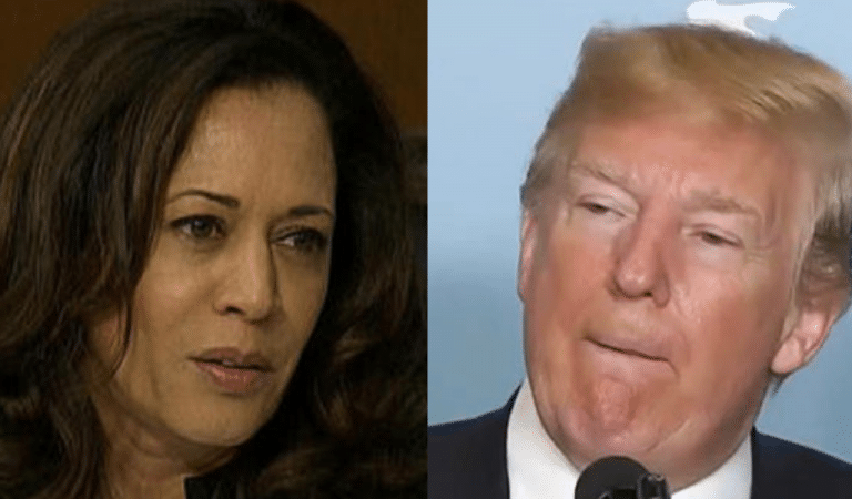 "Trump Makes Big Mistake Calling Kamala Harris ""Nasty,"" Her Response Is Perfect"