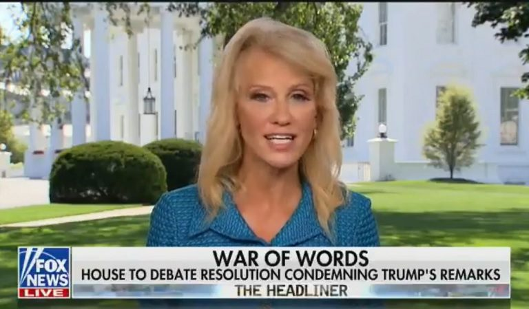 Kellyanne Conway Vehemently Disagrees With Her Husband During Live Interview, Sides With Trump