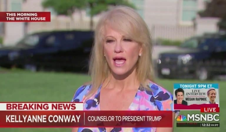Kellyanne Conway Just Defied Subpoena, Didn't Show Up For House Hearing