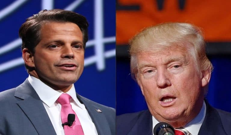 """Despite Only Hiring """"The Best People,"""" Trump Goes After Scaramucci Again On Twitter, Calls Him A """"Nut Job"""""""